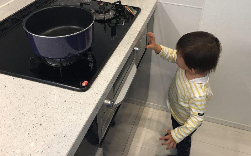 キッチンのガスコンロを操作する1歳児