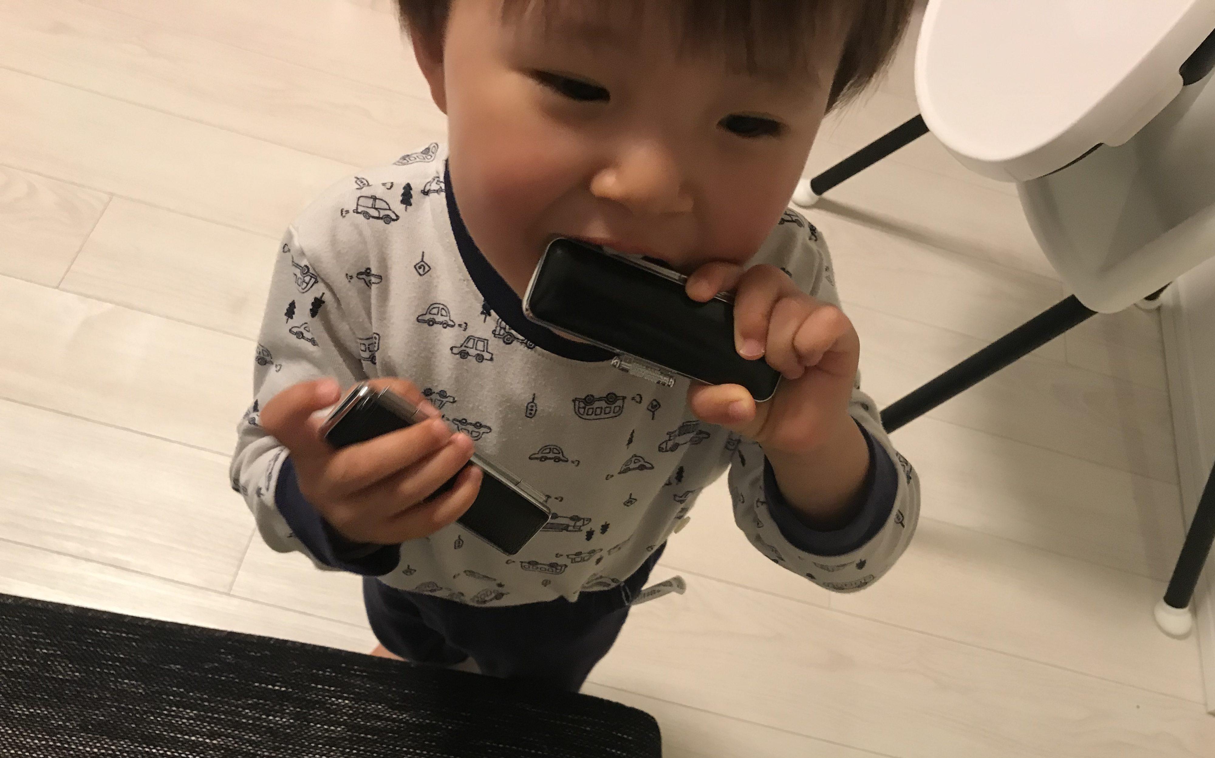 両手に実印を持ってくわえる1歳児