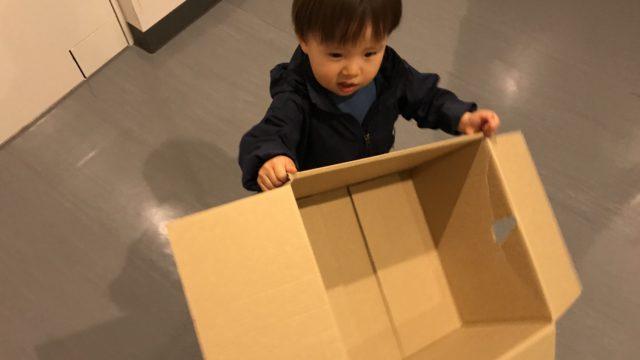 引っ越し荷造り用のダンボールを運ぶ1歳児